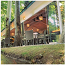 Cafe Saadabad-instagram post 6