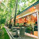 Cafe Saadabad-instagram post 8